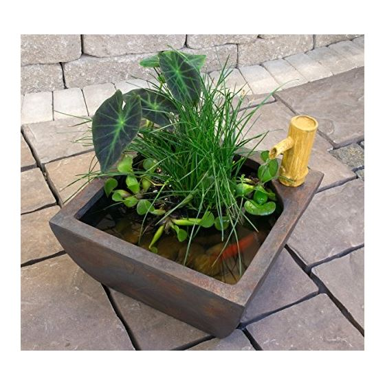 78197 Aquatic Patio Pond Water Garden With Bambo-3